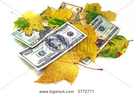 Autumn Leaf Fall Of Dollars On A White Background