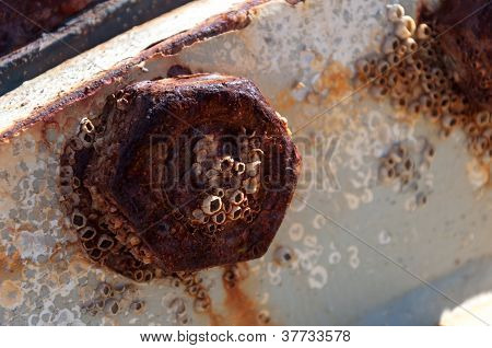 Close-up Of A Rusted Part Of Steel Tube