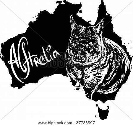Wombat As Australian Symbol