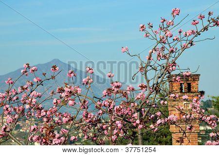 landscape near Avigliana