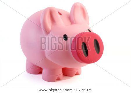 Cerdo rosa caja de dinero
