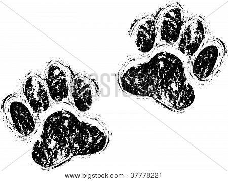 patas de perro