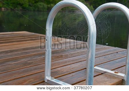 Spider Web on the Dock