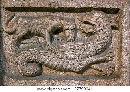 Dog Bites A Dragon - Cathedral Of Trento Italy