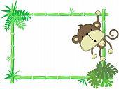 Cute baby monkey vector frame