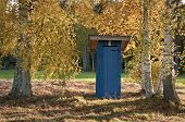 pic of outhouses  - Outhouse between birches with yellow leafs in the autumn - JPG