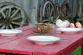 foto of meals wheels  - Glass dish full of salad and ecologic apples on wooden table in rural homestead - JPG