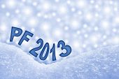 New Year 2013 PF greeting card