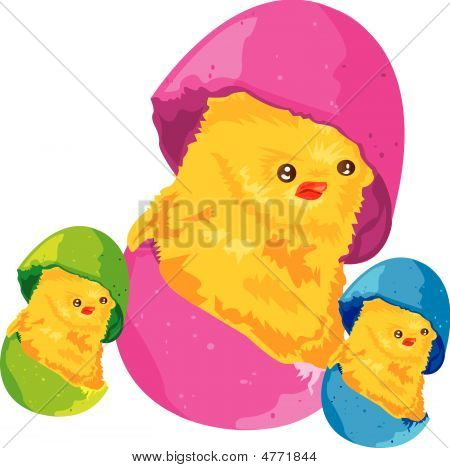 Chick easter