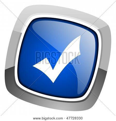 accept icon
