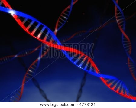 Dna Strings