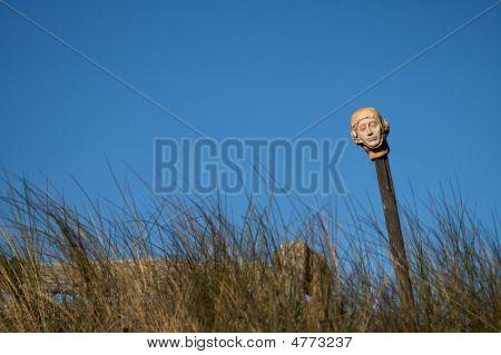 Head Sculpture In Field