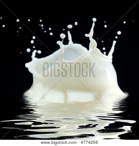 Milk Splash And Reflection