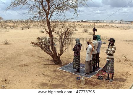 Muslims praying in Dadaab refugee camp in the shade of the tree