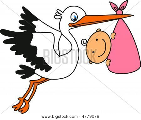 Storch und baby