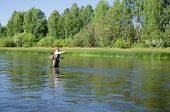 stock photo of chub  - Fisherman catches of chub fly fishing in the Chusovaya river in the afternoon - JPG