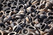 picture of discard  - Heap of dumped old car tires ecological disaster - JPG