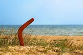 foto of boomerang  - Brown boomerang on overgrown sandy beach against blue sea and sky - JPG