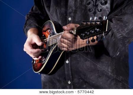 Mandolin Player