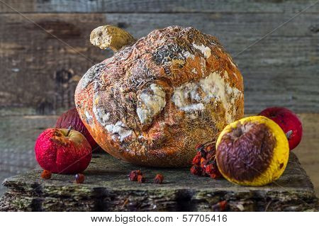 Rotten Fruit Wooden Board
