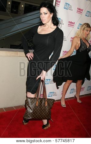 Joanie Laurer  at the Los Angeles Premiere of 'Naked Ambition an R-Rated Look at an X-Rated Industry'. Laemmle Sunset 5 Cinemas, West Hollywood, CA. 04-30-09