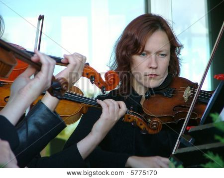 Red-haired Strict Looking Violinist