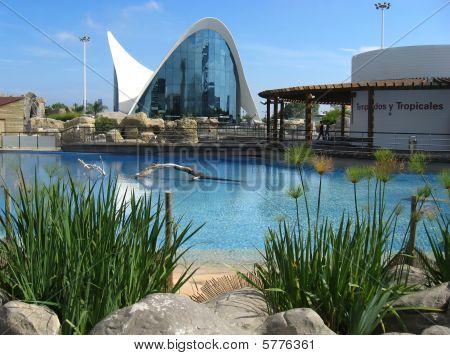 Oceanografic, Valencia