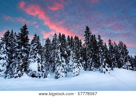 Beautiful Sunrise Near Madonna Di Campiglio Ski Resort, Italian Alps, Italy