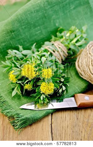 Rhodiola Rosea With Knife And A Coil Of Rope On Board