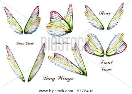 Peter Denovo's Butterfly Wings