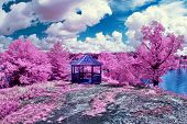 stock photo of imaginary  - Photographed with a 665nm near infrared converted camera this image depicts a magical spring like scene - JPG