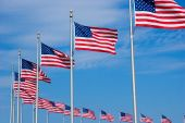 picture of washington monument  - US Flags at the Washington Monument in DC - JPG