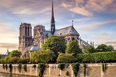 picture of notre dame  - View at the Cathedral Notre Dame in Paris  - JPG