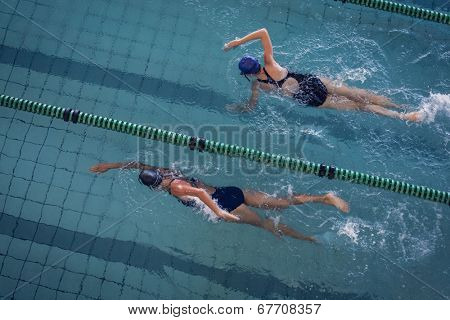 Female swimmers racing in the swimming pool at the leisure center