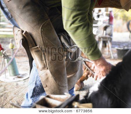 Enganche de caballo de recorte de herrador
