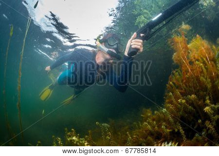 Underwater shot of the hunter with spear gun in the lake