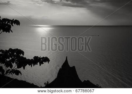silhouetted  sea shore in B&W