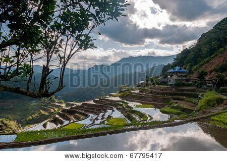 Rice-terraces Near Poitan-village