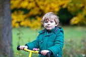 picture of four-wheel drive  - Cute active preschool boy driving on his bike in autumn forest - JPG