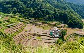 stock photo of ifugao  - overlooking the rice-terraces and village of Banga-An Luzon Philippines