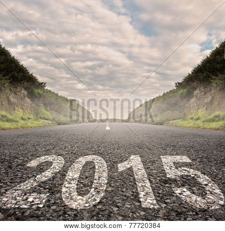 year 2015 painted on asphalt road