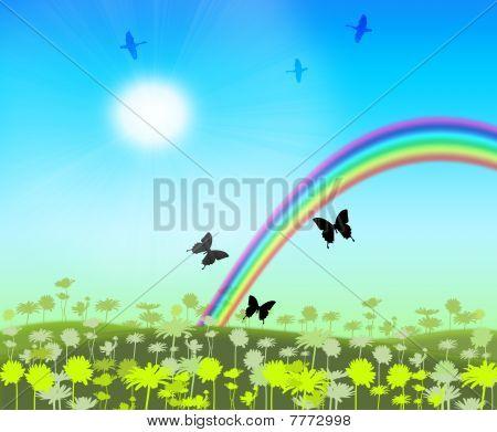 Rainbow on floral meadow