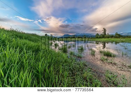 Grass Leading To Mountains And Marsh