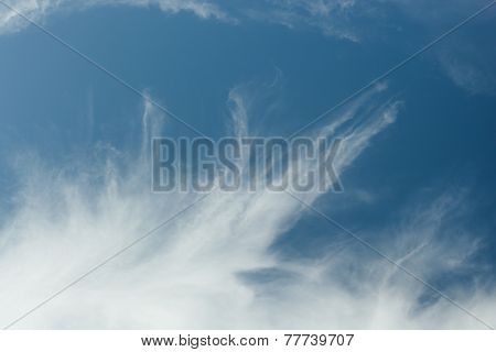 Blue sky with white feather clouds