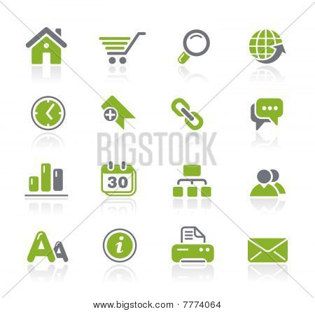 Web Site & Internet
