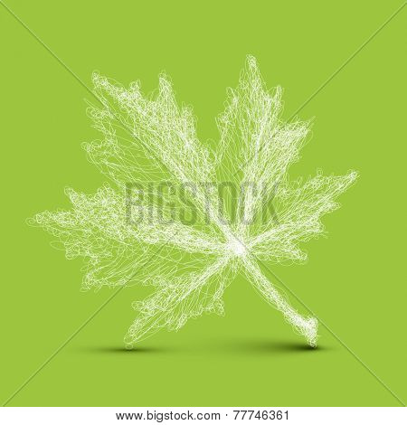 Vector spring leaf - simple continuous line drawing