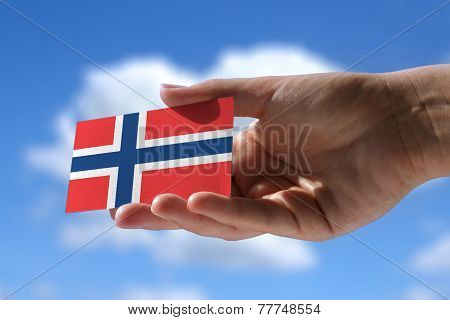 Small Norwegian Flag