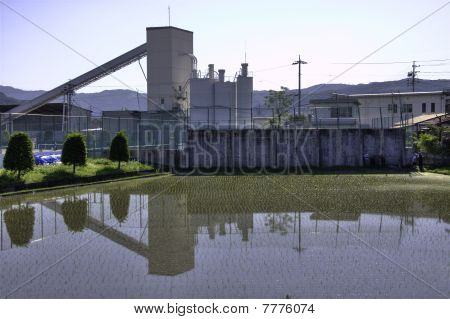 Japanese rice camp in front of factory