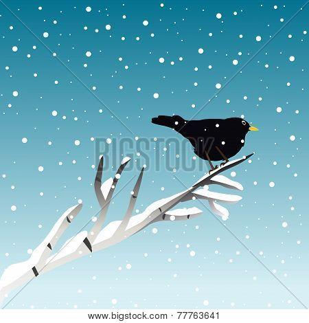 Winter Illustration With Blackbird On Branch