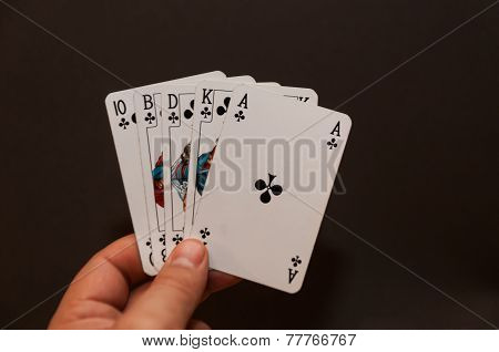 Hand holding a Royal Flush